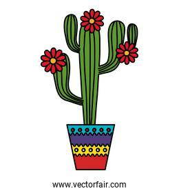 Isolated cactus with flowers inside pot vector design