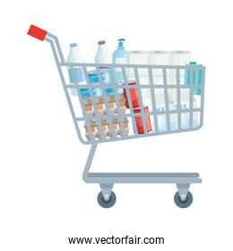 cart shopping with set groceries