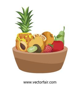 bowl with tropical fruits icon, colorful design