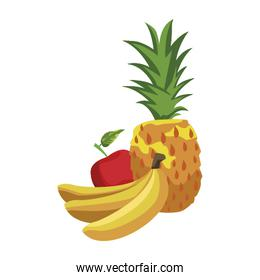 pineapple, bananas and apple icon, flat design