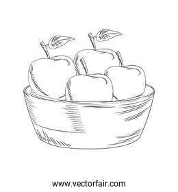 bowl with apples icon, sketch design