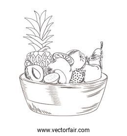 bowl with tropical fruits icon, sketch design