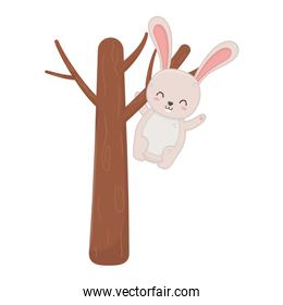 cute rabbit hanging from the tree hello autumn
