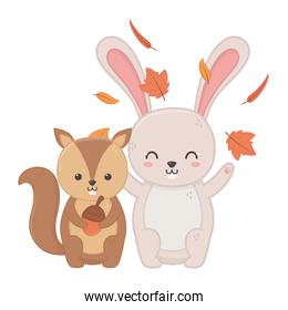 cute rabbit and squirel with acorn leaves hello autumn