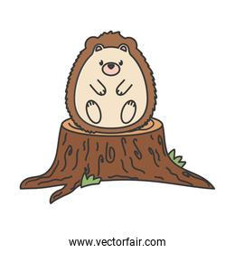 cute hedgehog on trunk autumn on white background