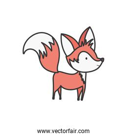 cute fox with big tail standing on white background