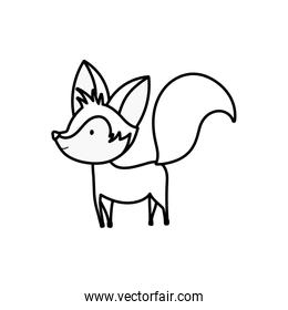 cute fox with big tail standing on white background thick line