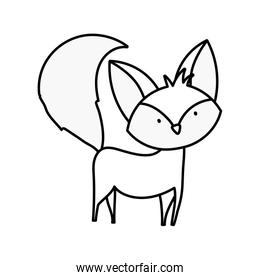 cute fox with big tail standing over white