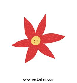 red flower poinsettia decoration icon