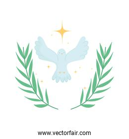 pigeon open wings gold star emblem