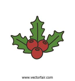 holly berry leaves chirstmas decoration icon