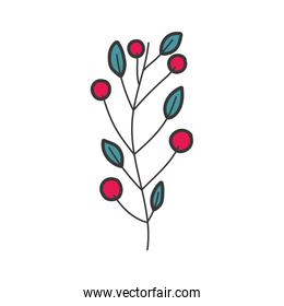 branch leaves berries foliage icon