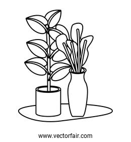 houseplants home decoration isolated icons