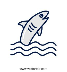 Isolated shark fill style icon vector design