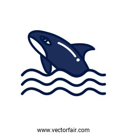 Isolated whale fill style icon vector design