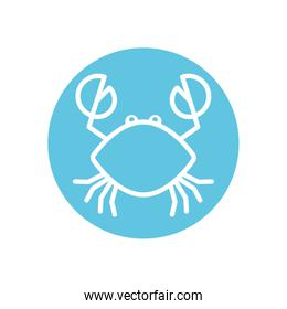 Isolated crab line block style icon vector design