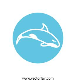 Isolated whale line block style icon vector design
