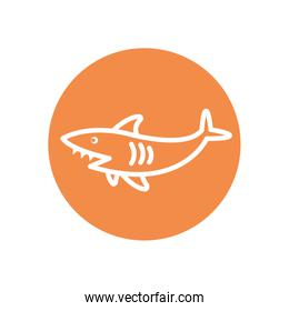 Isolated shark line block style icon vector design