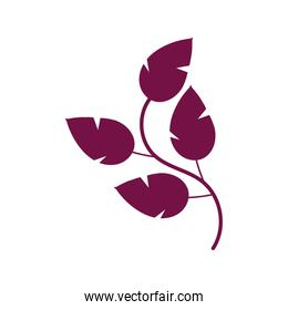 branch with leafs plant redwine color  icon