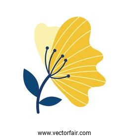 beautiful flower isolated icon desing