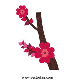 branche with flowers desing isolated icon