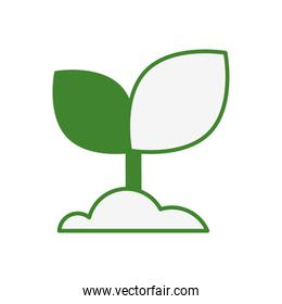 leaf plant nature planting icon