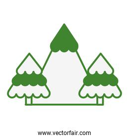 mountain with snow and tree plant scene