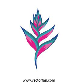 tropical heliconia exotic plant icon