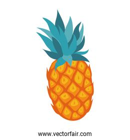 fresh tropical pineapple fruit icon