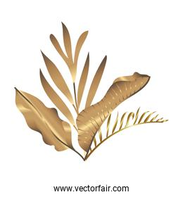 tropical heliconia and leafs exotic golden decoration