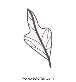 leaf plant nature isolated icon