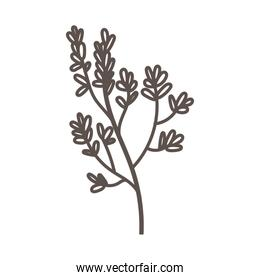 branch with leafs ecology linear icon