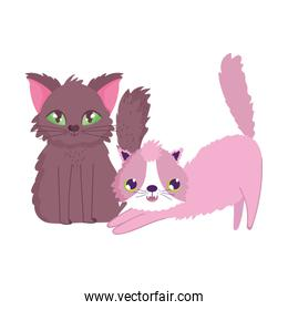 cats stretching and sitting feline cartoon pets
