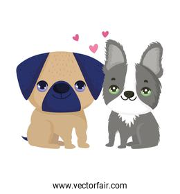 dogs pug and boston terrier sitting cartoon pets