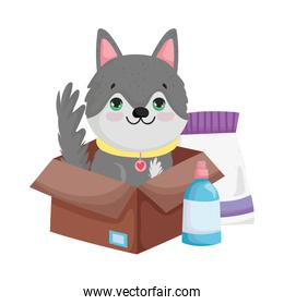 dog in box with food package cartoon pets