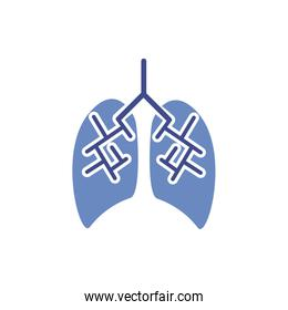 lungs human organ isolated icon