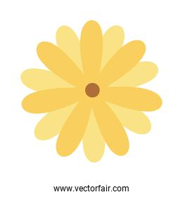 yellow flower decoration isolated icon design