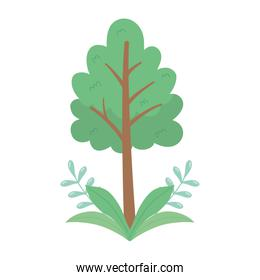 tree foliage branches leaves nature isolated icon design