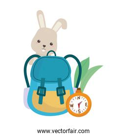 camping cute rabbit rucksack and compass leaves nature cartoon