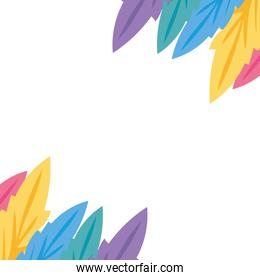 Isolated colored feathers plumes vector design