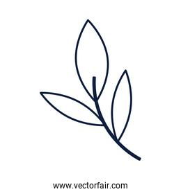 ecology branch with leafs isolated icon