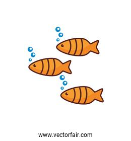 fishes sea animal line color style icon