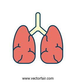 lungs organ icon, line and fill style