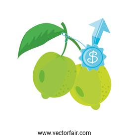lemon with price symbol on white background