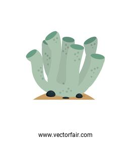 Isolated sea coral vector design