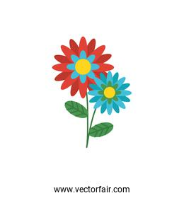 Isolated flowers ornament design