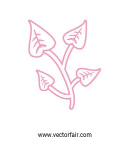 Isolated plant line style icon vector design