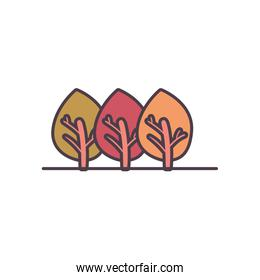 Isolated season trees line and fill style icon vector design