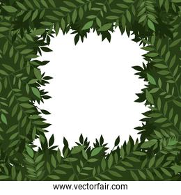 Green leaves frame vector design