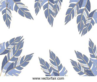 Isolated tropical blue leaves vector design